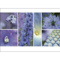 "Postkarte ""Sommer, blau"""