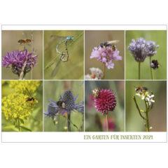 Ein Garten für Insekten - Kalender 2021
