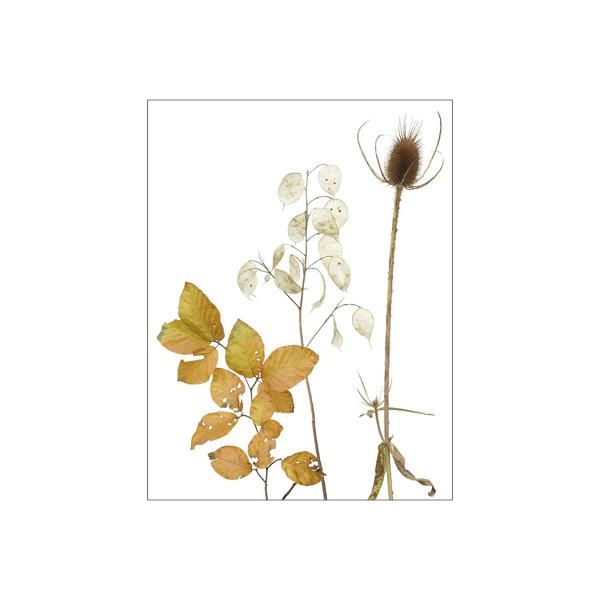 """Minikarte """"Herbststimmung"""""""