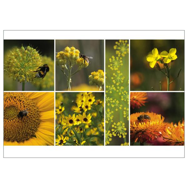 """Postkarte """"Sommer, gelb"""""""