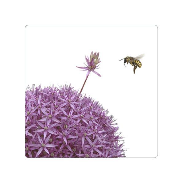 "Magnet ""Biene an Allium"""