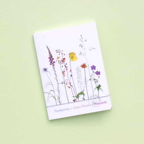 """Postkartenset """"Sommerwiese"""" im Mäppchen"""