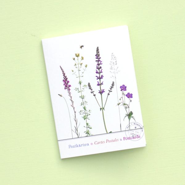 """Postkartenset """"Insektengarten"""" im Mäppchen"""