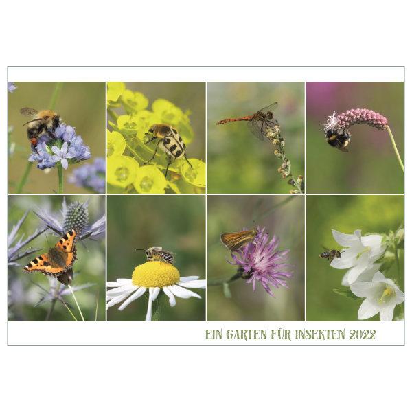 """Kalender """"Ein Garten für Insekten"""" 2022"""